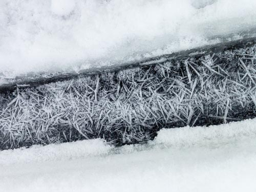 Large ice crystals refrozen overnight from melt-water