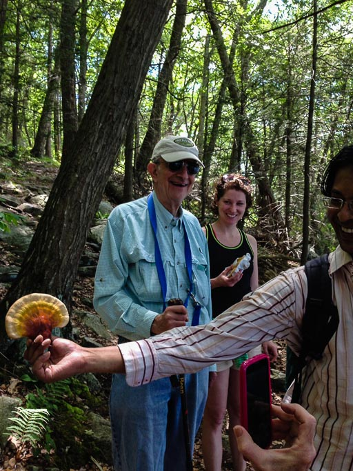 Photo of a group of people looking at a red, yellow and tan bracket fungus shaped like a fan