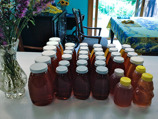 Photo of bottled honey on a table top